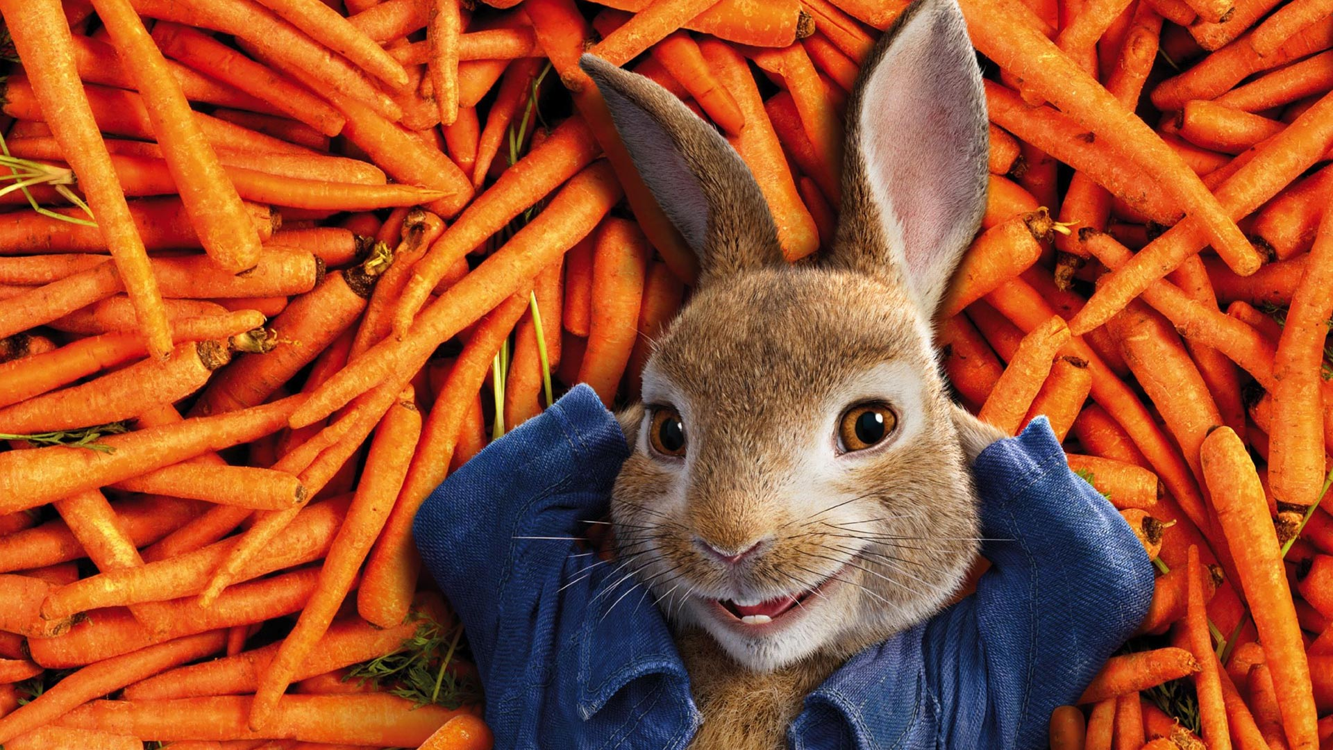 https://cinemaplanet.pt/wp-content/uploads/2018/05/newPeterRabbit.jpg